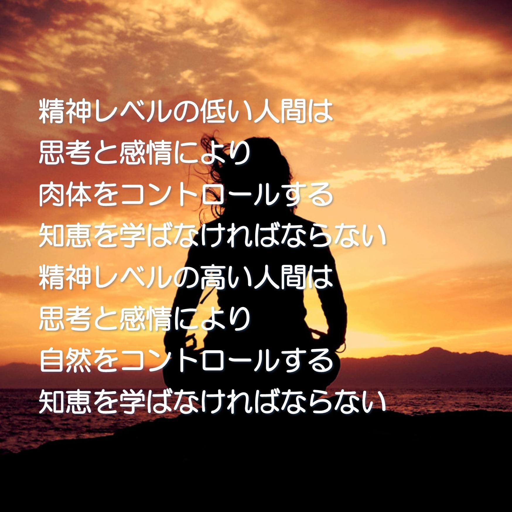 一言集No.8